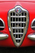 ab Alfa Romeo Guilia Spider 1600 grille