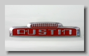 aa_Austin 152 Paralanian badge